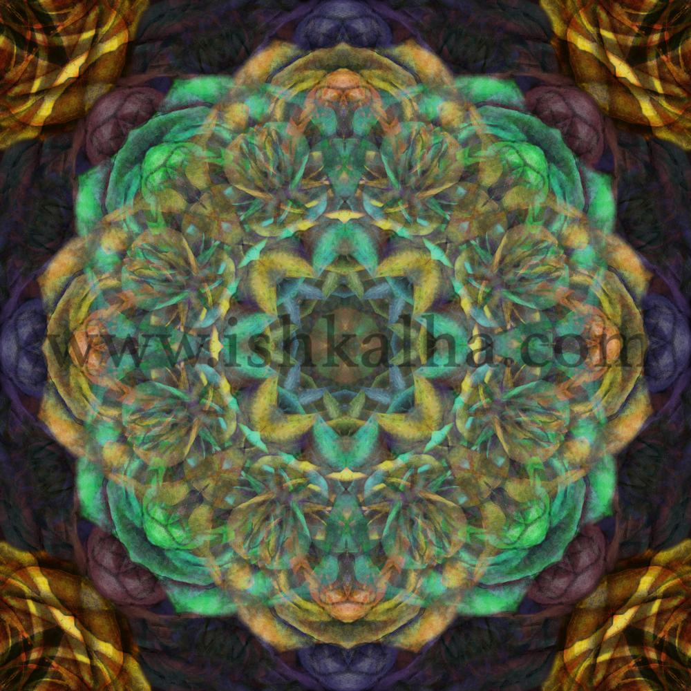 Splendor - Fine Art Print - Mandalas by Ishka Lha