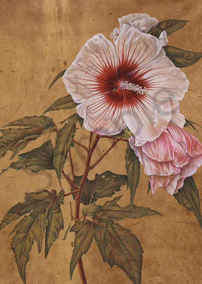 Hibiscus Art | Jetart Company