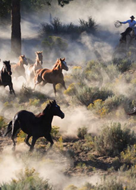 Wild Horse Stampede Art | demofineart