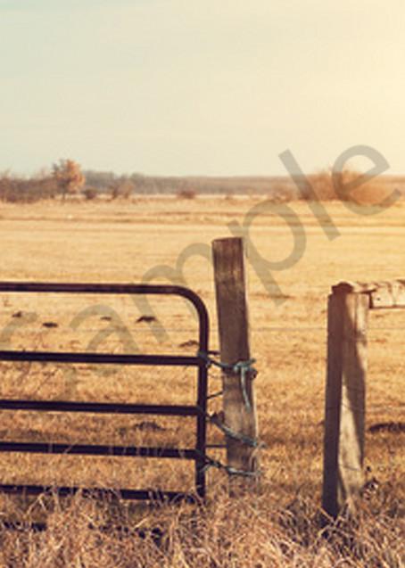 Open Ranch Art | demofineart