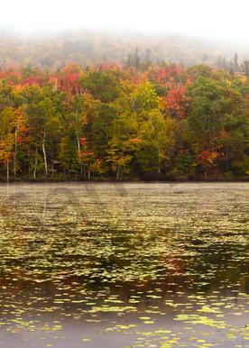 Moose Pond Art   Scott Cordner Photography