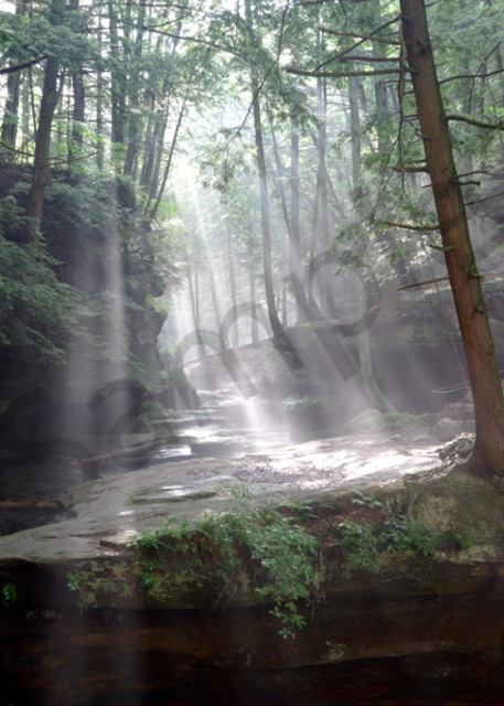 2885 Sunbeams Hocking Hills, Ohio Art | Cunningham Gallery