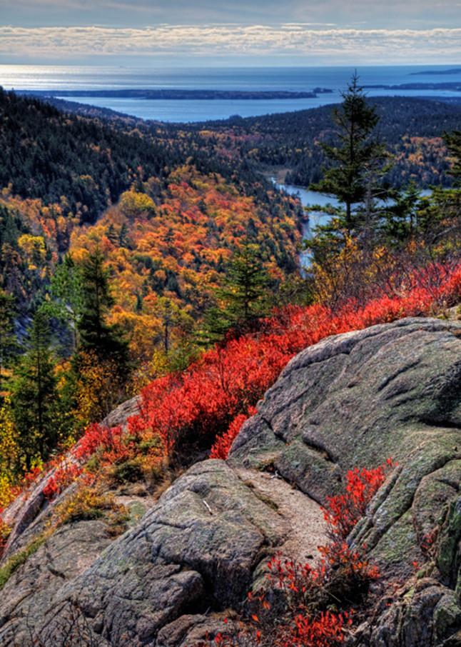 Acadia National Park 3008 Art | Cunningham Gallery
