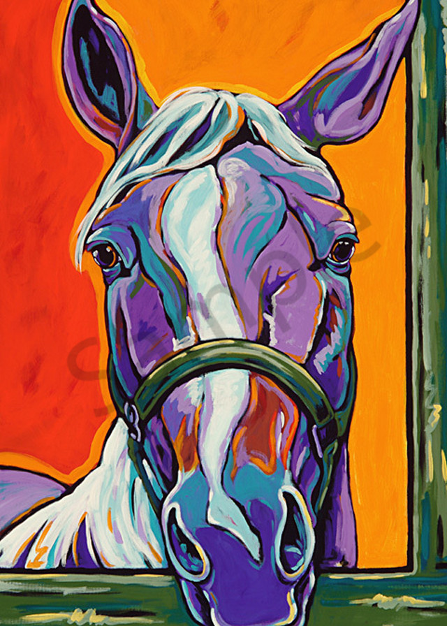 What A Face Art | Sally C. Evans Fine Art