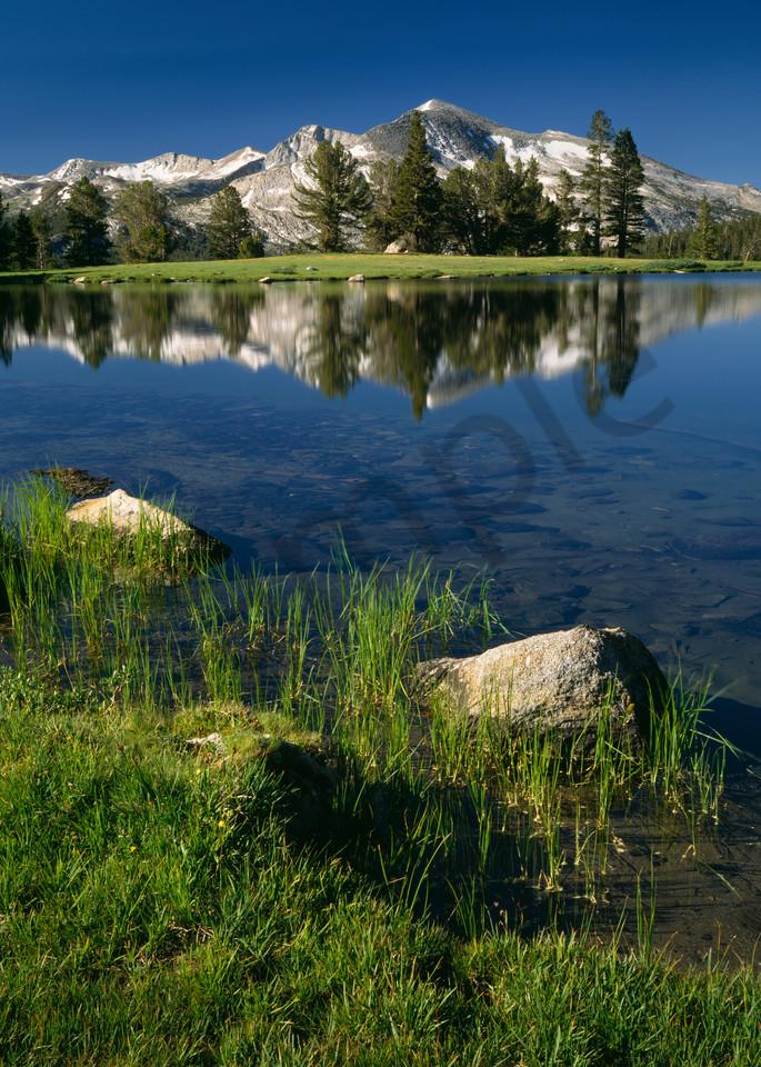 Mammoth Peak and Dana Meadows