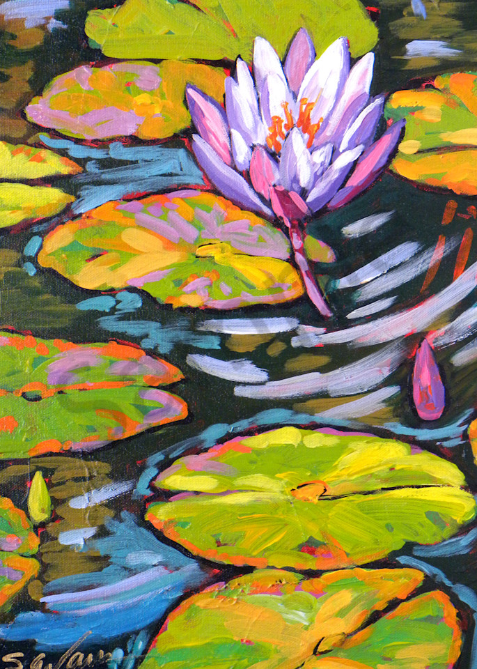 Purple Lily Dances In Light Art | Sally C. Evans Fine Art