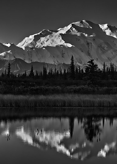 Denali Art | Scott Cordner Photography