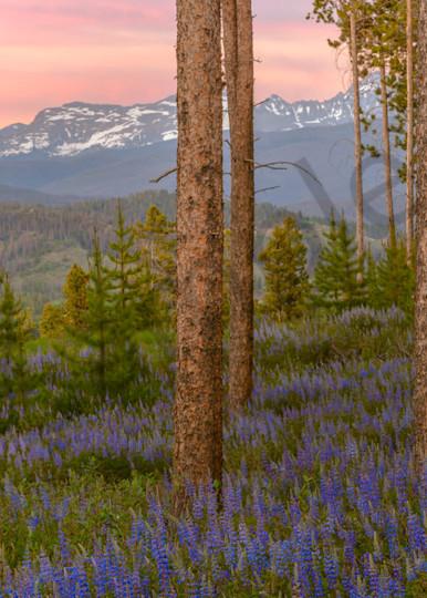 Purple Mountain Majestic Art | Scott Cordner Photography