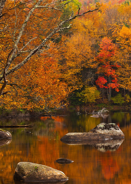 An Autumn Pond Art | Scott Cordner Photography