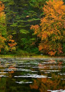 Autumn Reflection Art   Scott Cordner Photography