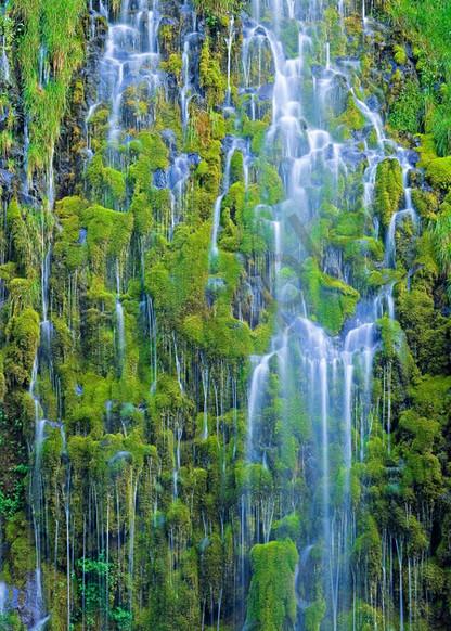 Mossy Falls Art   Scott Cordner Photography