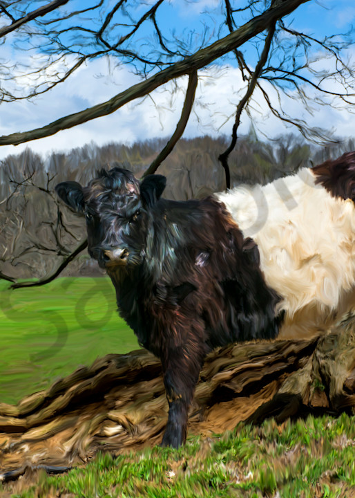 painting of Oreo cow
