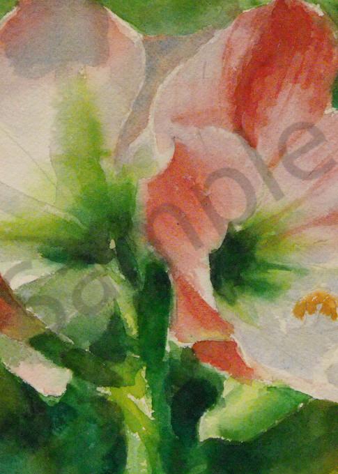 Amaryllis Art for Sale