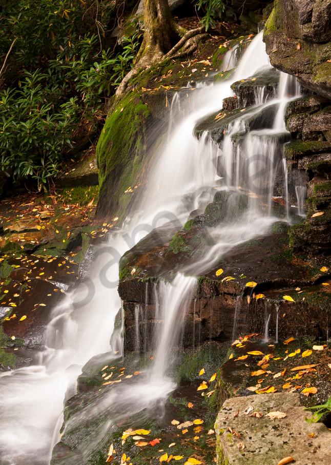 Waterfall Wall Art: Elakala Falls #2 Detail