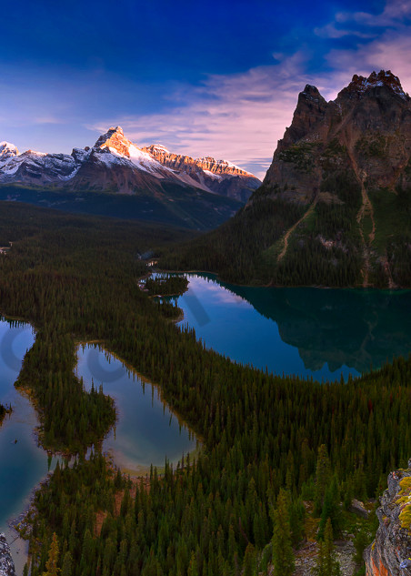 Lake O'Hara and Opabin Plateau.Banff national Park|Canadian Rockies|Rocky Mountains|
