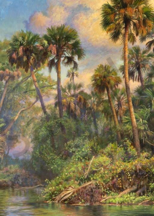 Palm Jungle Art | Sally C. Evans Fine Art