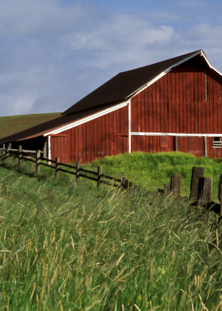 Red barns of the Palouse