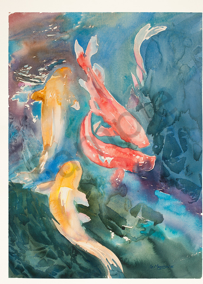 Koi Color | Zen Landscapes | Gordon Meggison IV