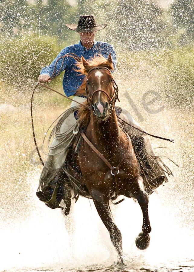 Splash Photography Art | HoofPrintsFineArt