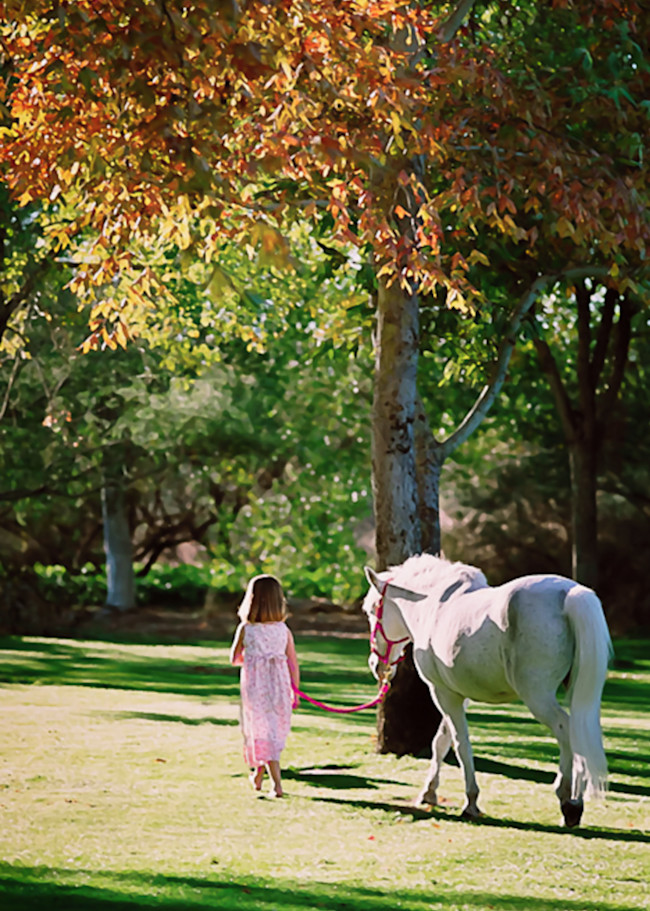 Girl With White Pony