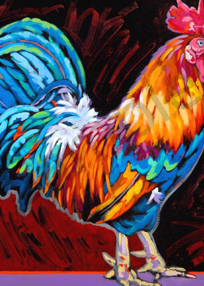 Cocky Art   Sally C. Evans Fine Art
