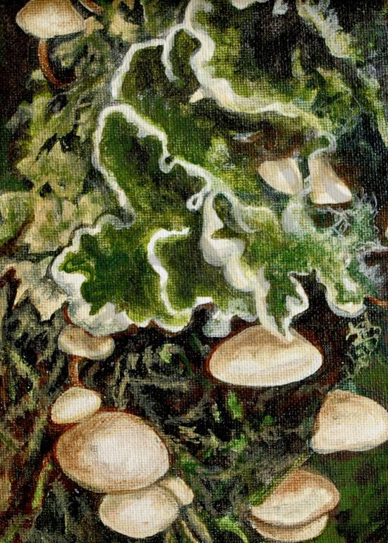 The  Fungus - Teresa Young