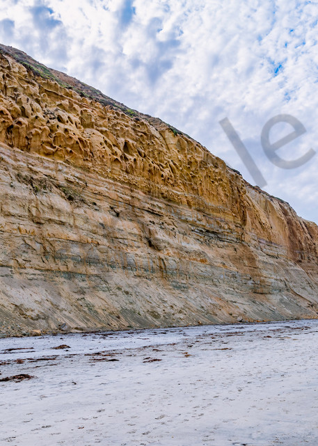 Torrey Pines Cliffs, La Jolla, CA | Susan J Photography