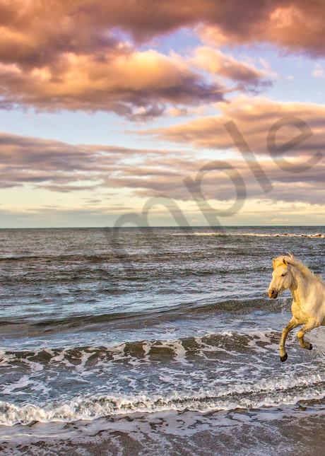 Freedom Photography Art | John Martell Photography