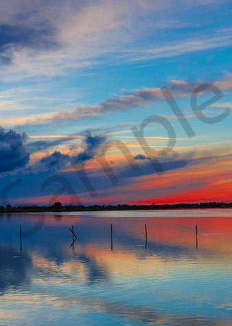 Swan Song Photography Art   John Martell Photography