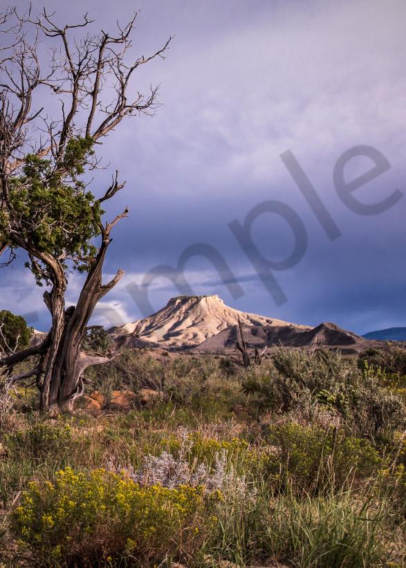 Desert Serenity Photography Art | Mason & Mason Images