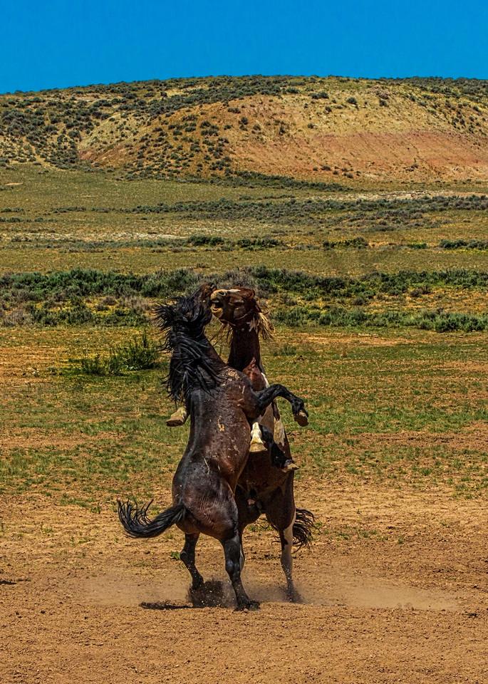 Clash In Cody Photography Art | John Martell Photography