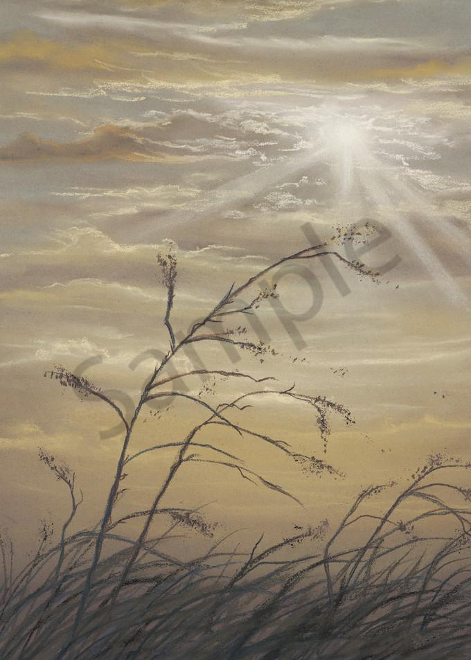 Dusty Day 1 by Jenny Greentree