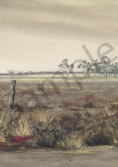 Wide Brown Land by Jenny Greentree