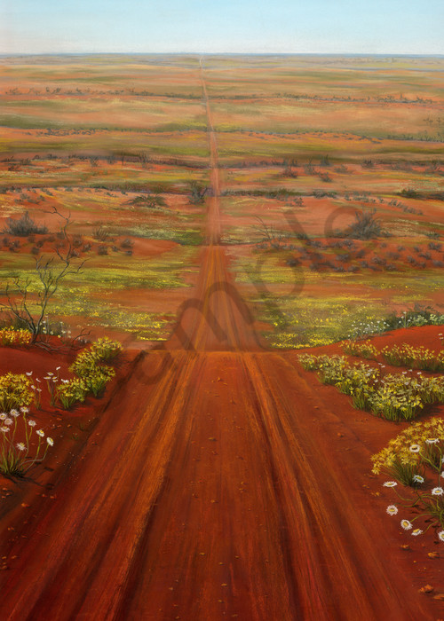 Strzelecki Desert Spring by JennyGreentree
