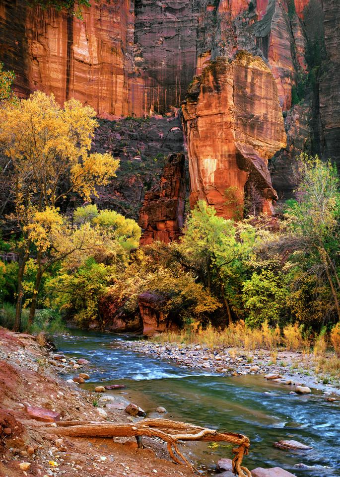 Zion National Park 57 Photography Art | frednewmanphotography