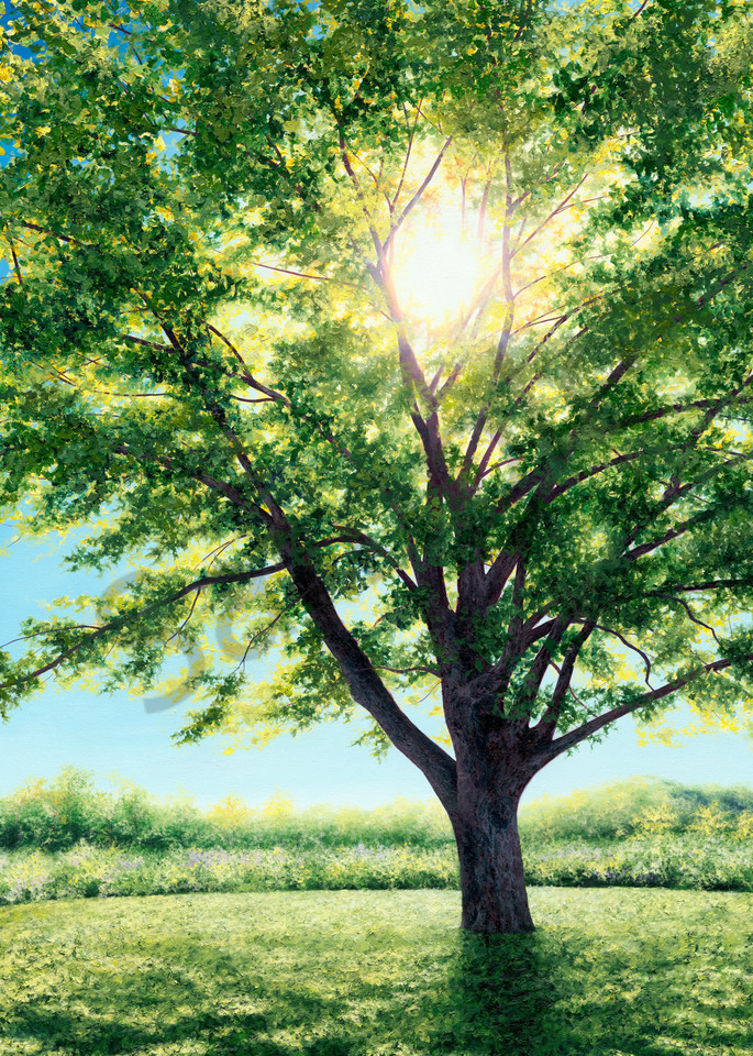 Divine Wisdom Art For Sale