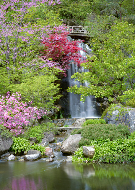 A garden of color, waterfalls and nature - fine art prints - fine art photography - aluminum metal prints