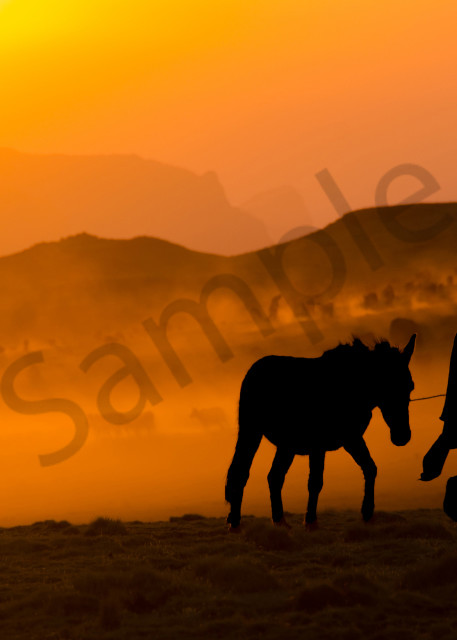 Sillhouetted man and horse at sunset in the Simien Mountains, Ethiopia