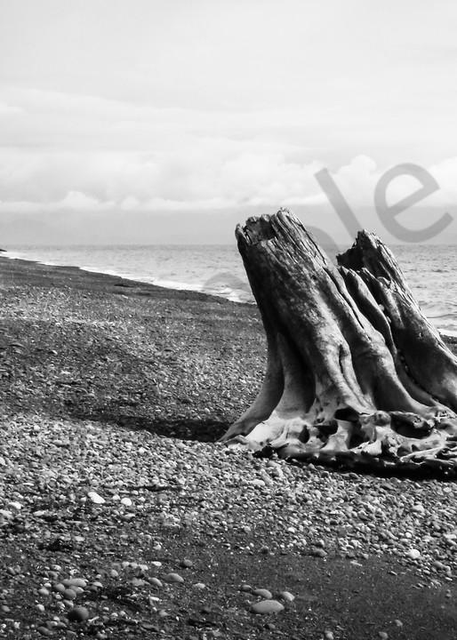 Stunning black & white nautical prints for sale as fine art | Sage & Balm Photography