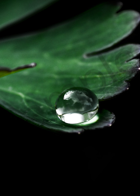 On The Precipice Photography Art | Sage & Balm Photography