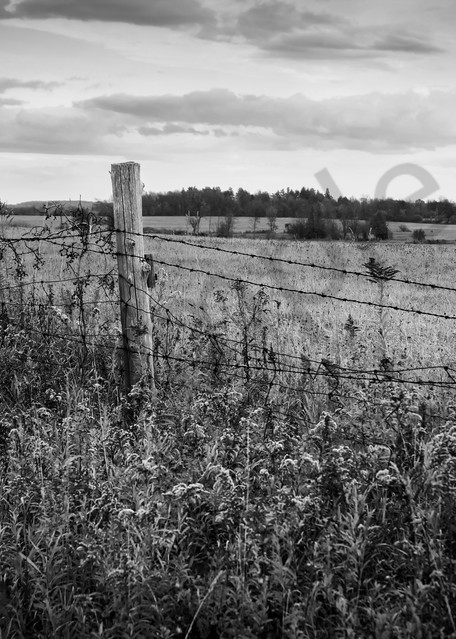 Black & white country and ruralscape photograph of a farmer's fence in a field in rural Ontario, for sale as fine art by Sage & Balm