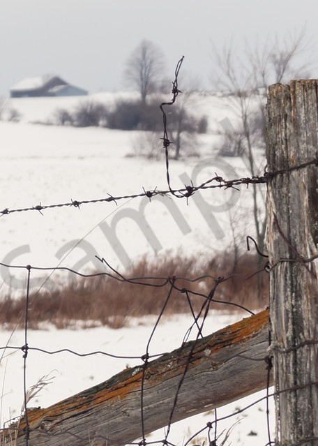 Country Fence Photography Art | Sage & Balm Photography