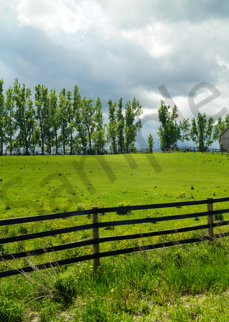 Country and ruralscape photograph of a horse grazing in a farmer's field under gathering storm clouds, for sale as fine art by Sage & Balm