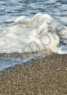 A pair of Oystercatchers on beach in panorama fine art photograph