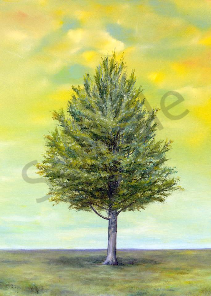 Leonas Tree/Summer Art | lawrencejollyfineart