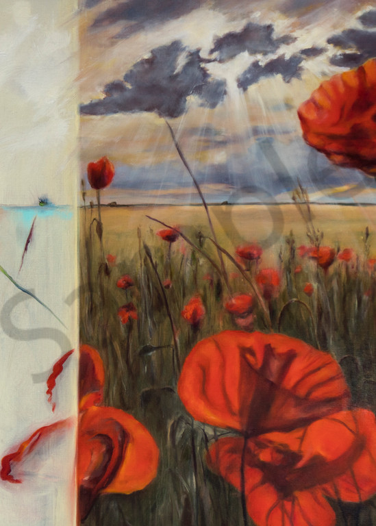 Texas Poppies Art | lawrencejollyfineart