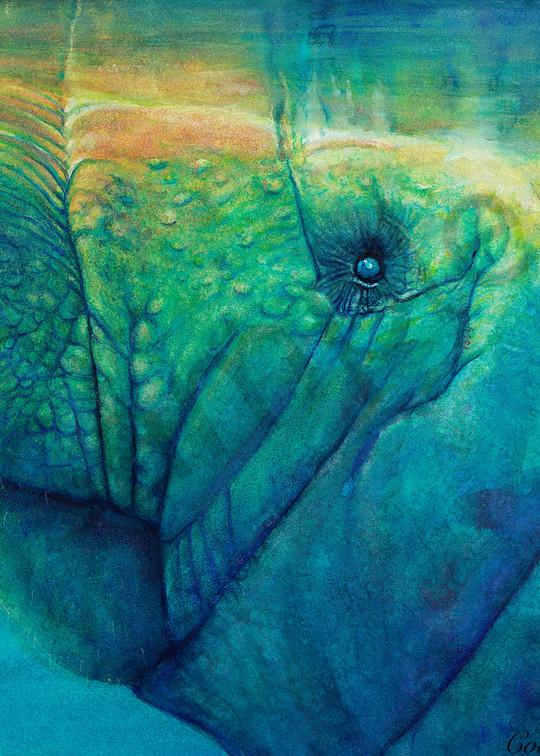 Mr. George The Manatee Art | ColleenNashBecht