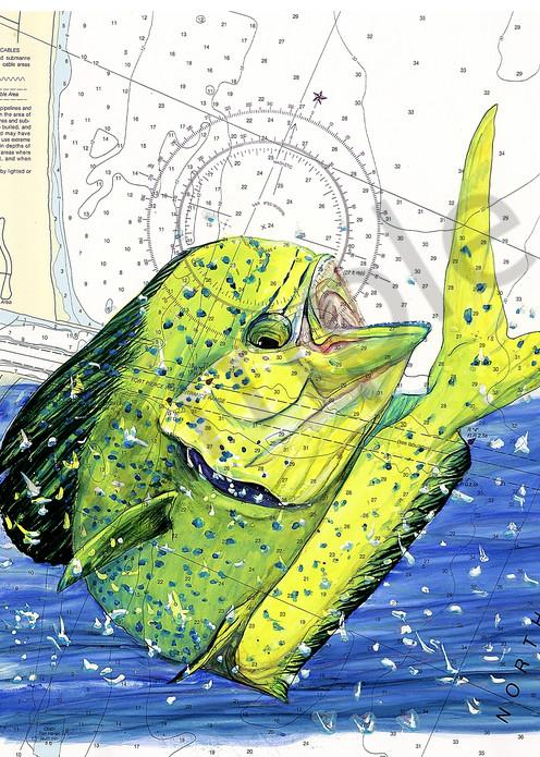 Endless Summer Fishing Art | ColleenNashBecht