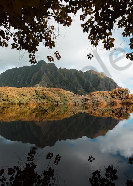 Lake Hawaii View 1 Photography Art | stephanelacasa