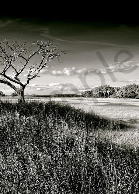 John Mc Manus Photography Art | demoartist